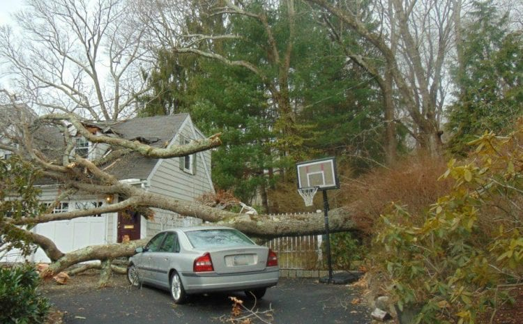 Storm Damage in Warwick: Storm Season Has Arrived