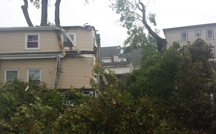 Storm Damage Claim in Pawtucket: The Trees Are Falling