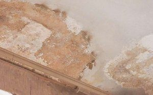 Is Water Damage Covered in Your RI Homeowner's Policy?