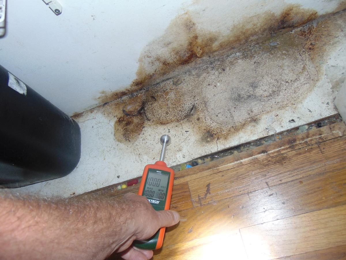 Protect Your Home From Mold | RI Resotarion | 24 Hour Emergency Services