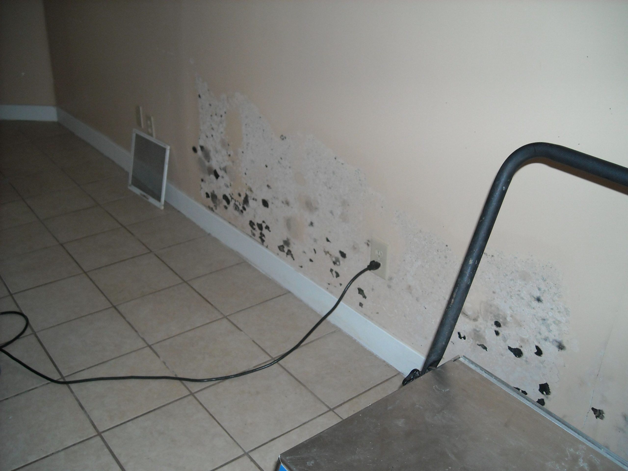 mold damage emergency restoration company in ri