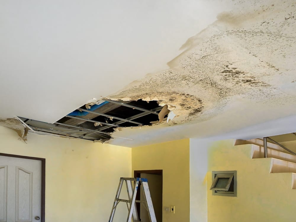 How To Tell If Water Damage Is New Or Old