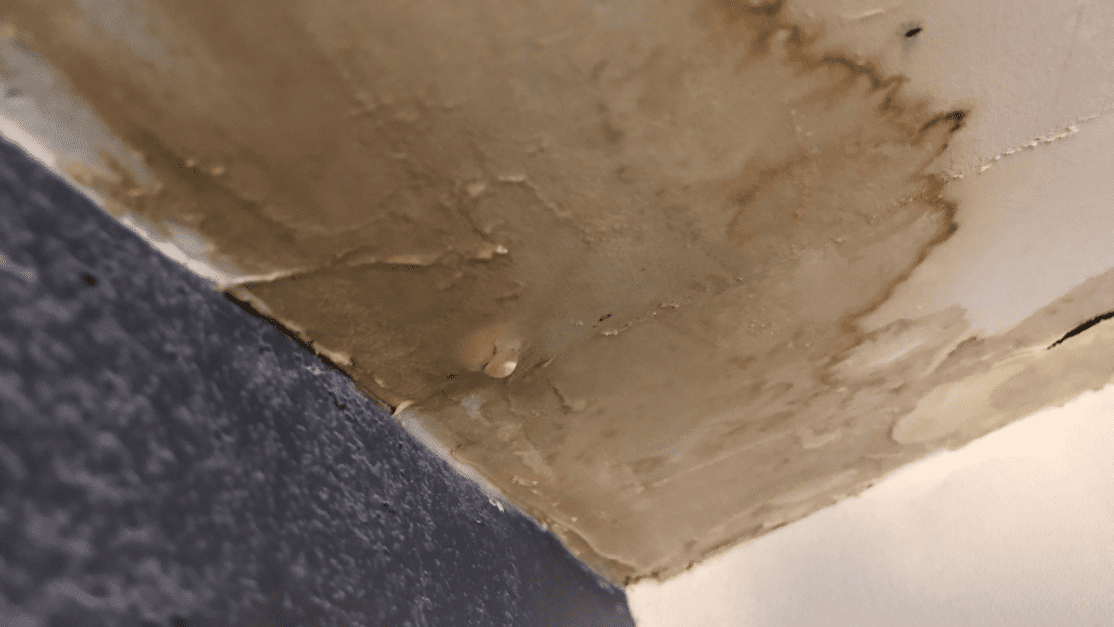 finding the source of water damage is important to know in order to make sure no more water damage can occur. If it does here is how to repair particle board water damage.