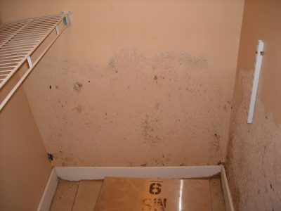 mold beginning to grow on ceiling due to water damage